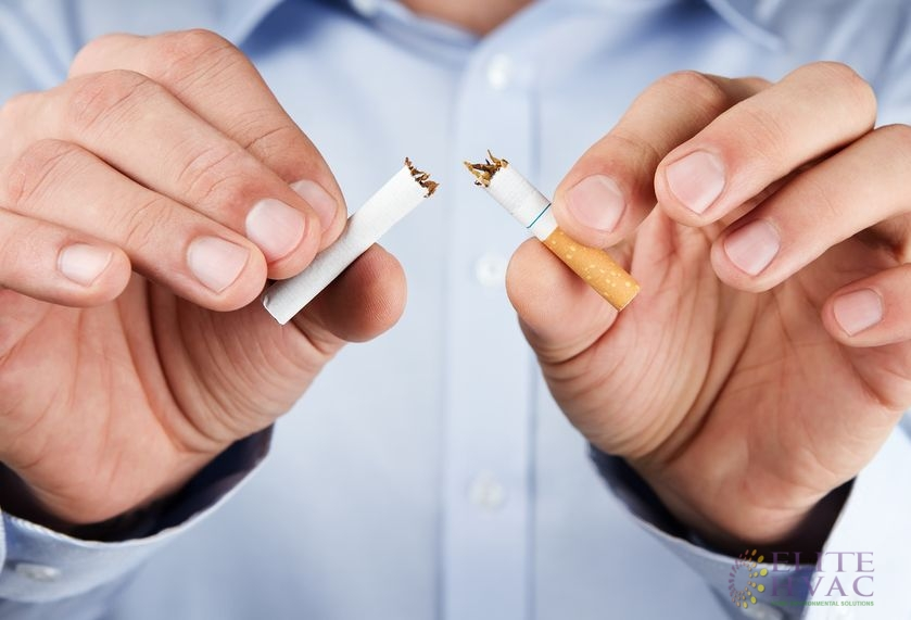 Human Hands Break a Cigarette in Half